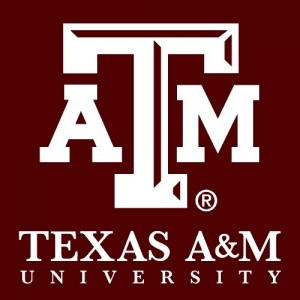 Cancer Researcher Yun Huang To Join Texas A&M's New Institute of Biosciences & Technology, Thanks to CPRIT Grant