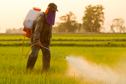 Alzheimer's and pesticides