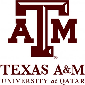 Image result for Texas A&M University at Qatar