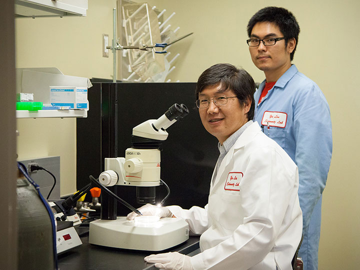 Yu Liu and Xiaopeng Shen in Liu's lab. Photo Credit: University of Houston