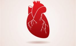 UH Developing Cutting-edge Strategies to Regenerate Heart Muscle Cell Formation