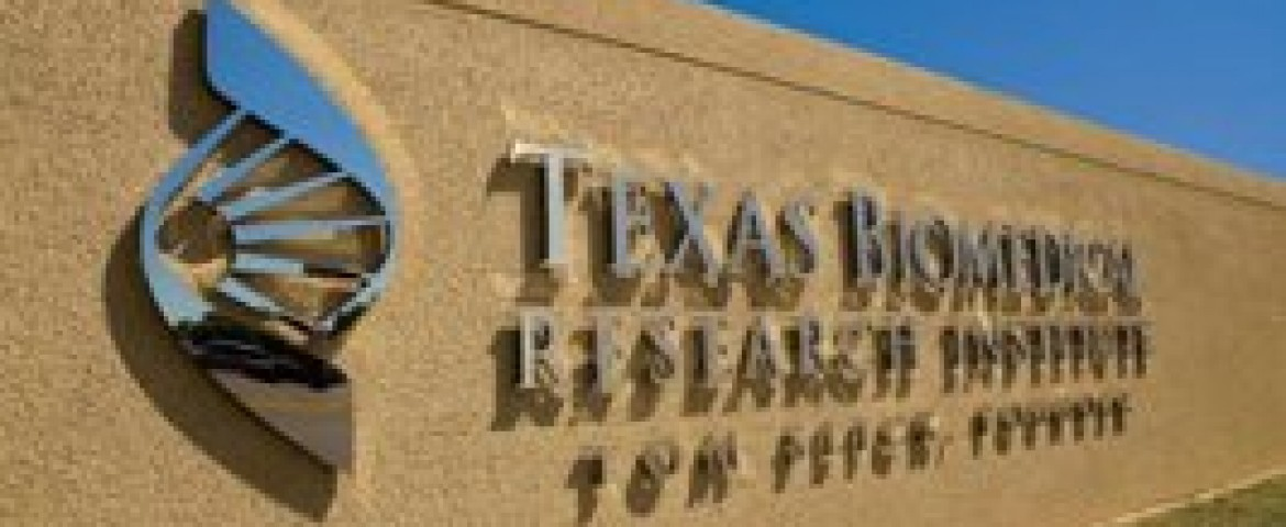Possible cure for Hepatitis B goes to human trials at Texas Biomed